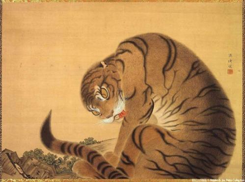 yakuchu-cat