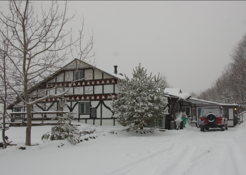 snowy Xmas on Taconic mountainside