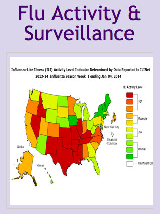 flu 2014 worse in Southeast US