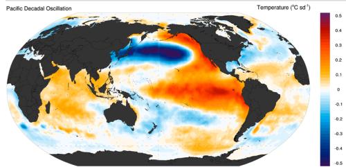 North Pacific decadal oscillation