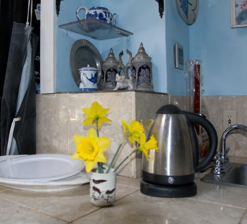 daffodils April 2014