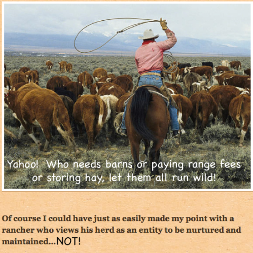ranchers don't want to pay range fees or cultivate pastures carefully