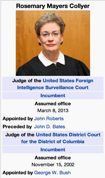 Rosemary collyer, Assassin drone judge