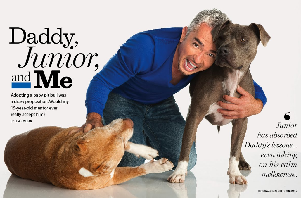 cesar millan national geographic dog trainer dude thinks