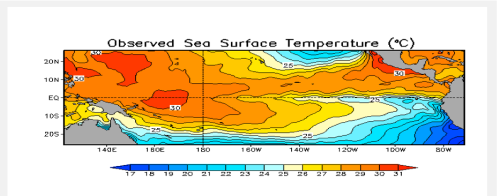 cold water rising la nina july 2014
