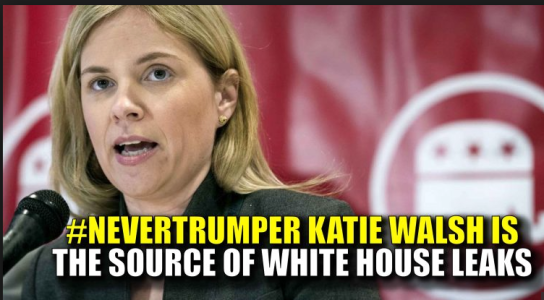 Image result for katie walsh whitehouse deputy chief of staff
